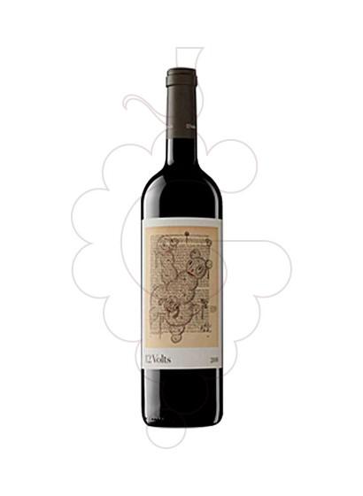 Foto 12 Volts vi negre