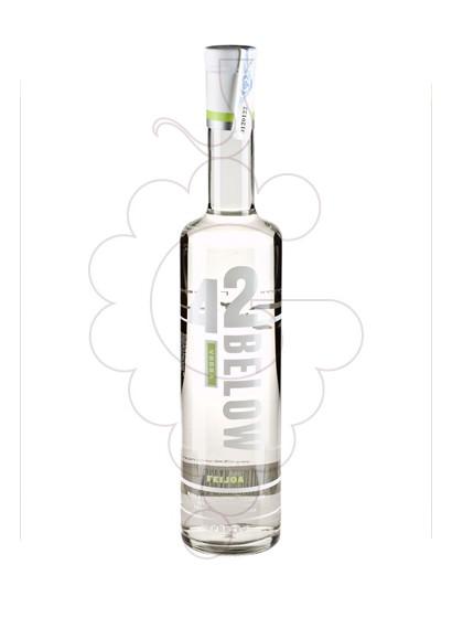 Foto Vodka 42 Below Feijoa