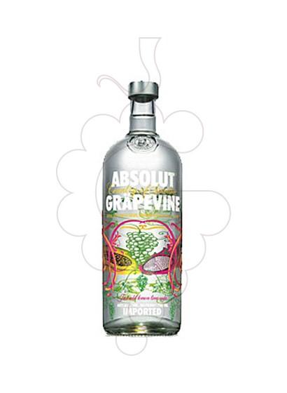Foto Vodka Absolut Grapevine