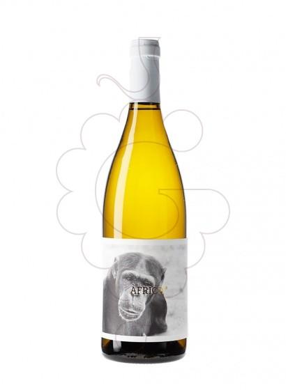 Foto Abu Mono vi blanc