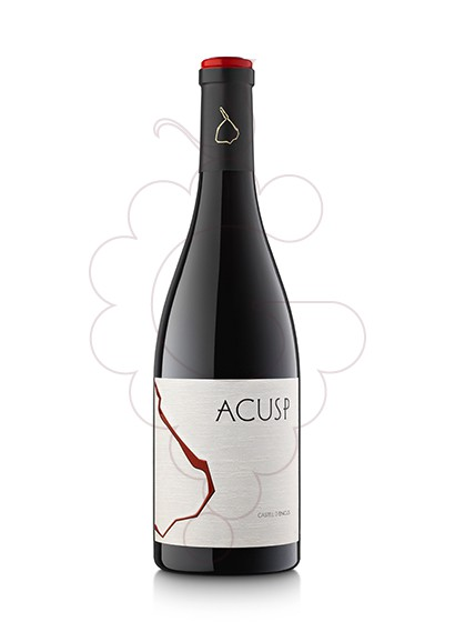 Foto Acusp vi negre