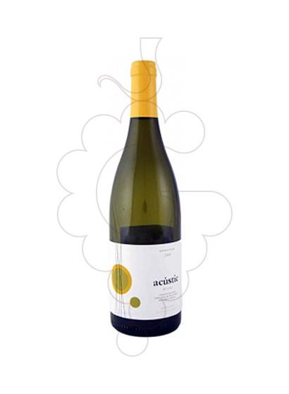 Foto Acústic Blanc vi blanc