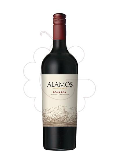 Foto Alamos Bonarda vi negre