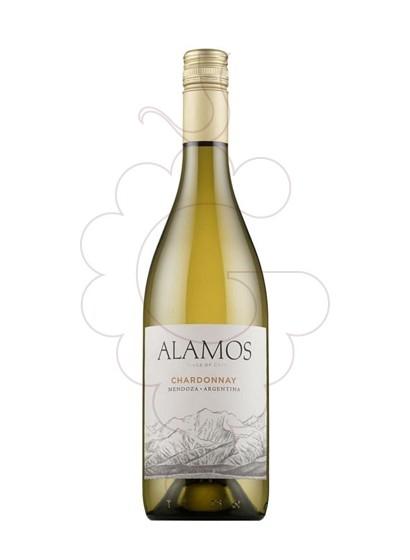 Foto Alamos Chardonnay vi blanc