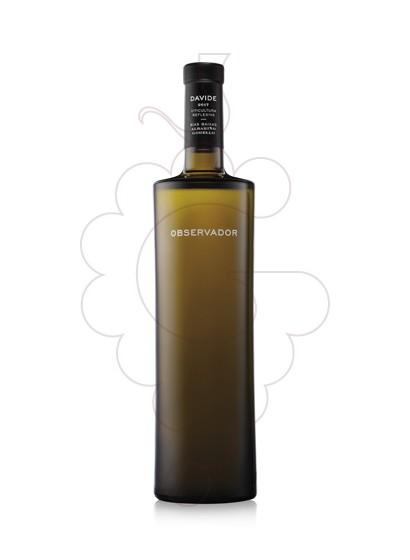 Foto Albariño Davide Observador vi blanc