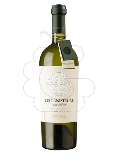 Foto Organistrum vi blanc