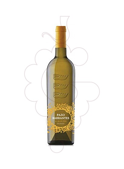 Foto Albariño Pazo de Barrantes vi blanc