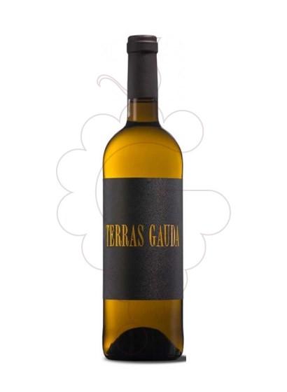 Foto Albariño Terras Gauda Etiqueta Negra vi blanc