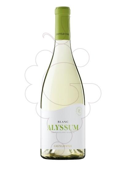 Foto Alyssum vi blanc