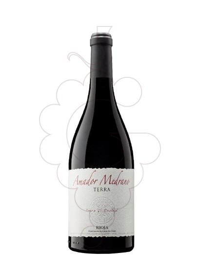 Foto Amador Medrano Terra Finca El Encinal vi negre