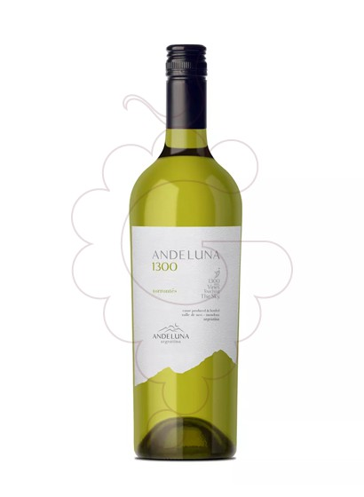 Foto Andeluna 1300 Torrontés vi blanc