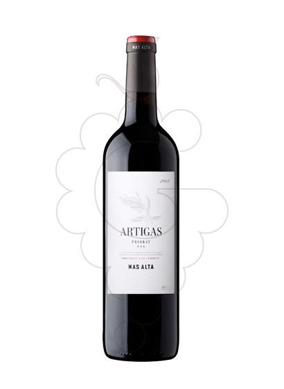 Foto Artigas vi negre