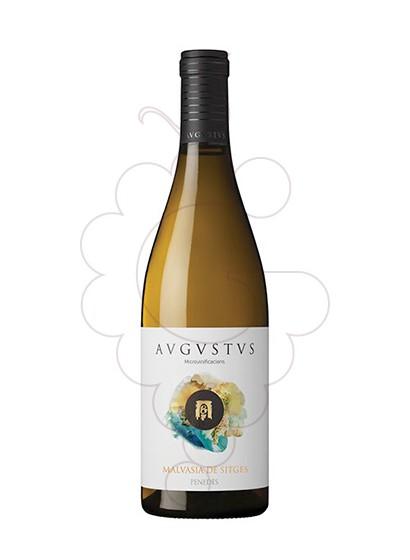 Foto Augustus Malvasia de Sitges vi blanc