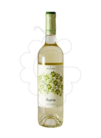 Foto Mas Llunes Àuria vi blanc