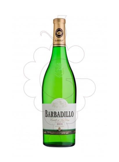 Foto Barbadillo Castillo San Diego Magnum vi blanc