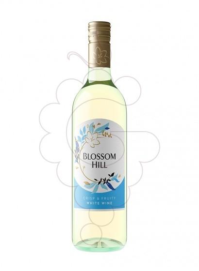 Foto Blossom Hill Blanc (Califòrnia) vi blanc