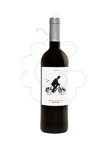 Foto Bona Nit Malparits vi negre