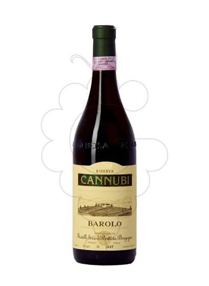 Foto Borgogno Barolo Cannubi vi negre