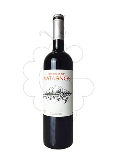 Foto Bosque de Matasnos vi negre