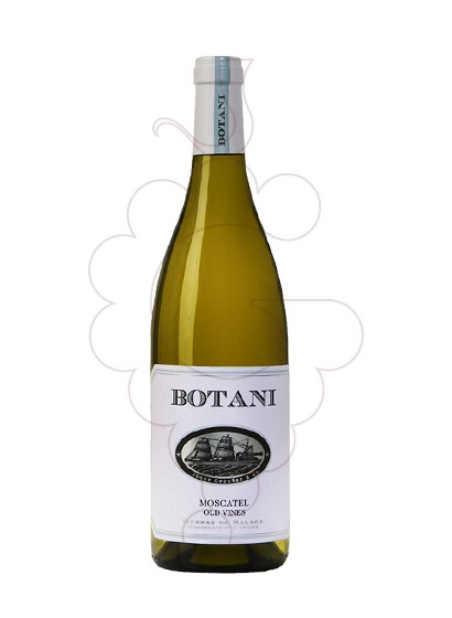 Foto Botani Blanc vi blanc