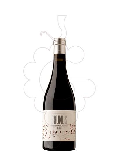 Foto Brunus (mini) vi negre