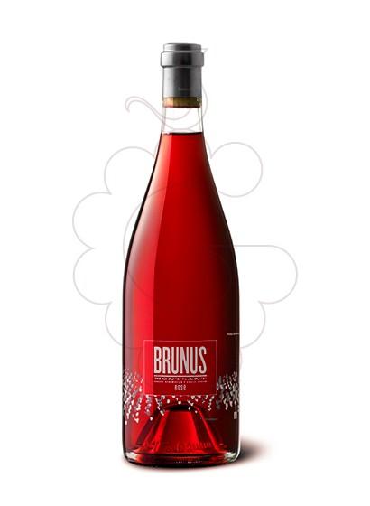 Foto Brunus Rose vi rosat