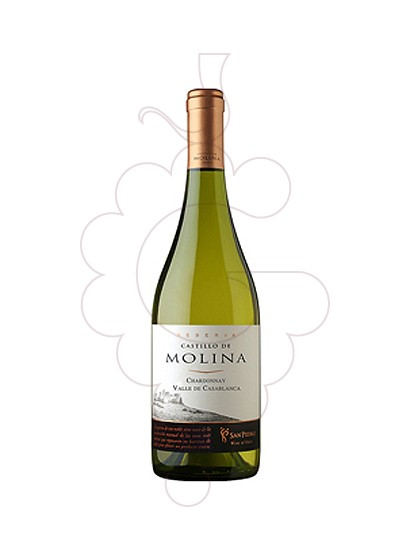 Foto Castillo de Molina Chardonnay vi blanc