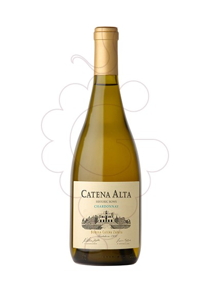 Foto Catena Alta Chardonnay  vi blanc