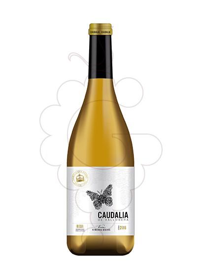 Foto Caudalia de Vallobera vi blanc