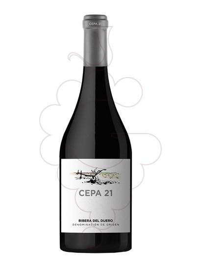 Foto Cepa 21 vi negre