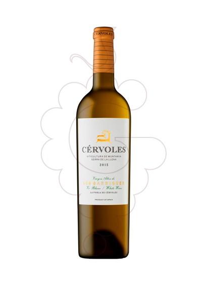 Foto Cérvoles Blanc vi blanc