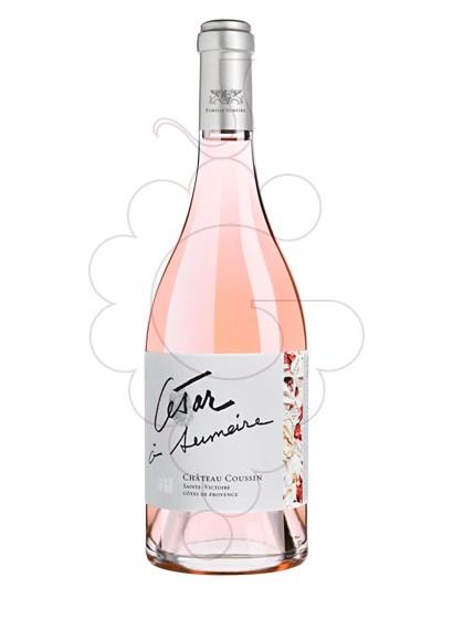 Foto Ch Coussin César à Sumeire Rosat vi rosat