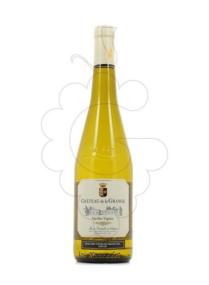 Foto Chateau de la Grange Muscadet Côtes de Grand Lieu vi blanc