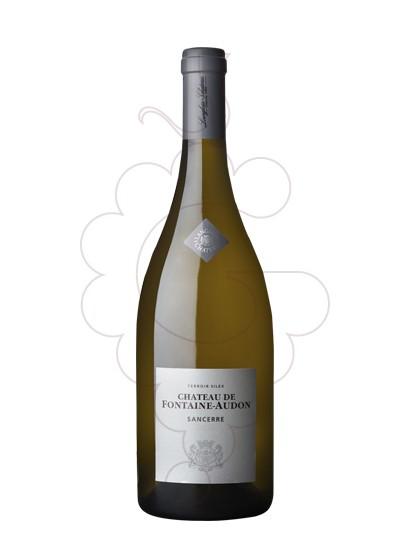 Foto Chateau Fontaine-Audon Sancerre vi blanc