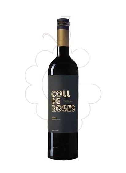 Foto Coll de Roses Finca del Mar vi negre