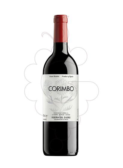 Foto Corimbo vi negre