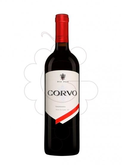 Foto Corvo vi negre