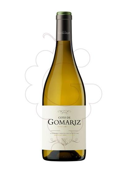 Foto Coto de Gomariz Dende o Século vi blanc