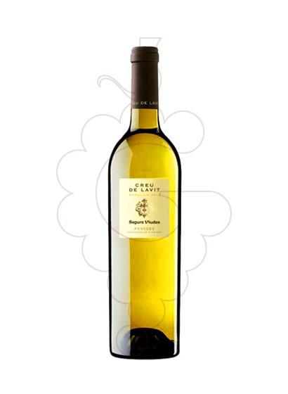 Foto Creu de Lavit Blanc vi blanc