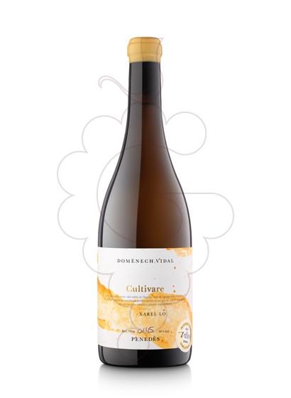 Foto Cultivare Blanc vi blanc