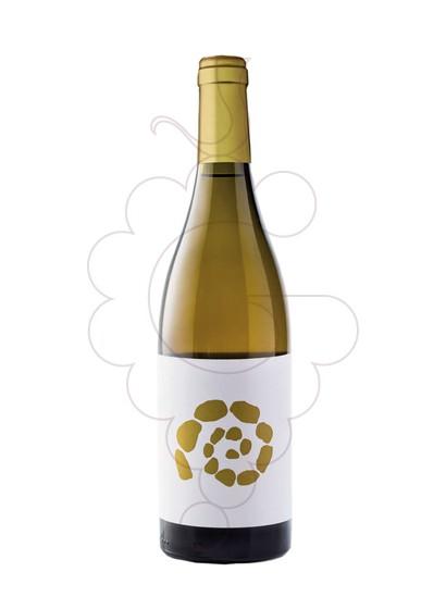 Foto El Missatger Blanc vi blanc