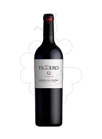 Foto Figuero 12 Meses Crianza (mini) vi negre