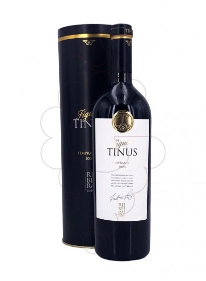Foto Figuero Tinus vi negre