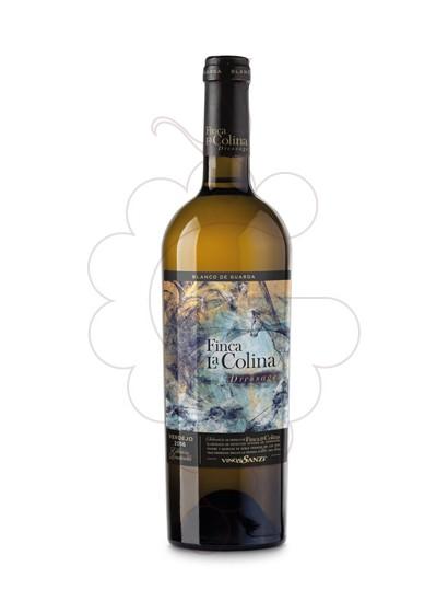 Foto Finca la Colina Dressage  vi blanc