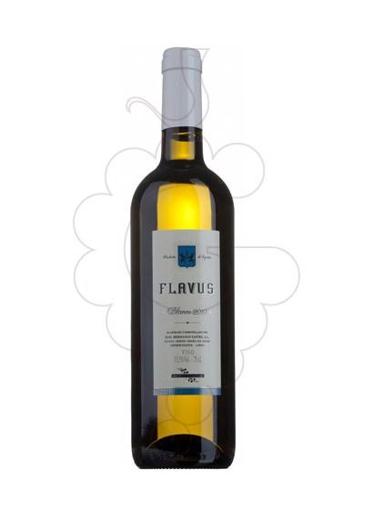 Foto Flavus Blanc  vi blanc
