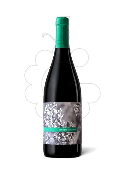 Foto Flor del Montsant  vi negre