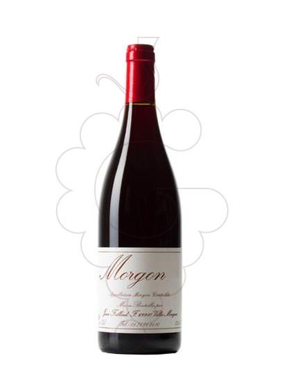 Foto Foillard Morgon Classique vi negre