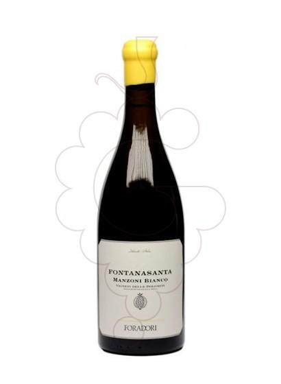 Foto Foradori Fontanasanta Manzoni vi blanc