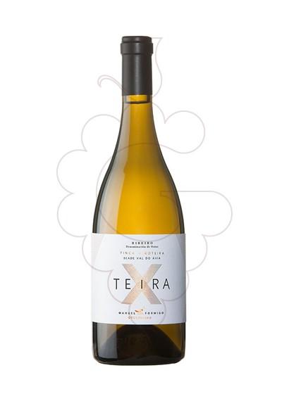 Foto Formigo Teira X vi blanc