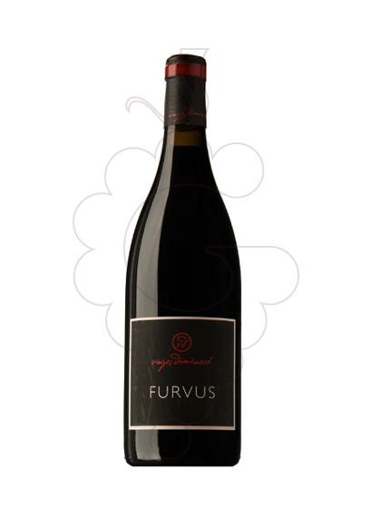 Foto Furvus Magnum vi negre